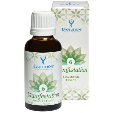 Salvation Essence 6 Manifestation