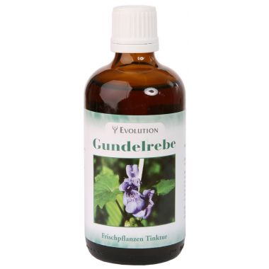 Ground Ivy Tincture