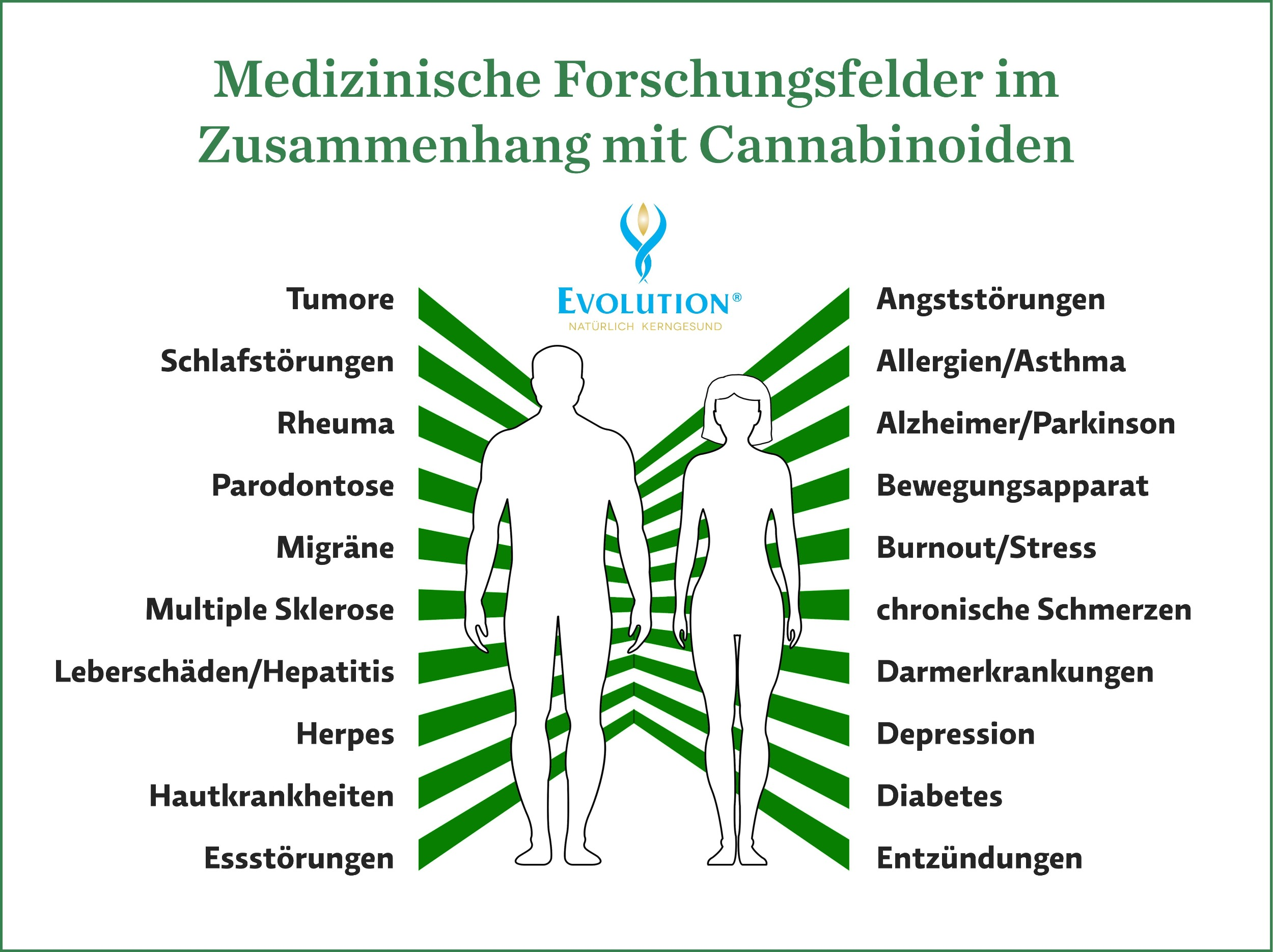 Medizinische Forschungsfelder im Zusammenhang mit Cannabinoiden