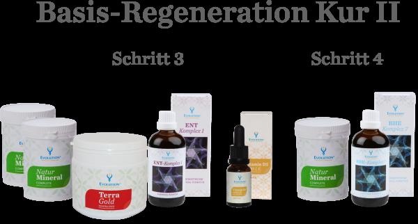 Basis-Regenerationskur II: Ganzheitliche Entschlackungskur