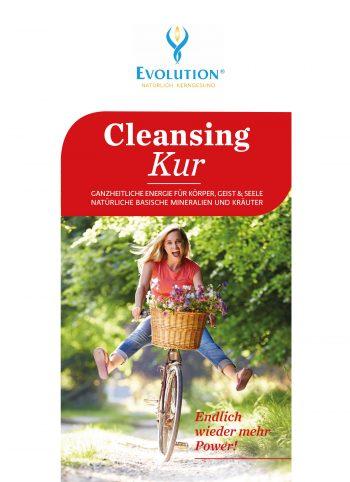 Cleansing Kur Broschüre