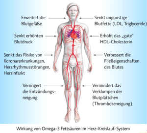 Grafik: Wie wirkt Omega 3 (Thumb)